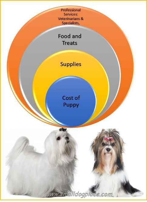 Graph of true dog costs