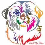 Dog Names Based on Color