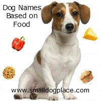 Dog Names Based on Food Items