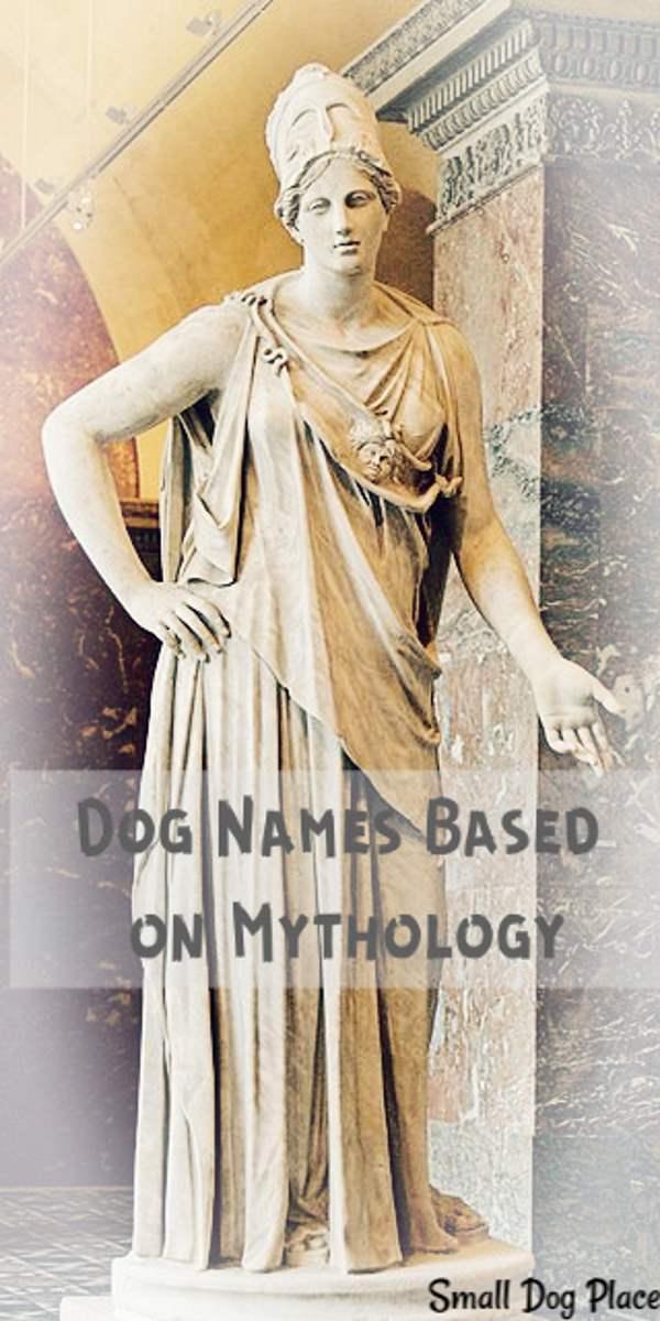 Dog Names From Mythology Pin