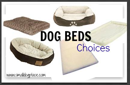 Dog Bed Choices