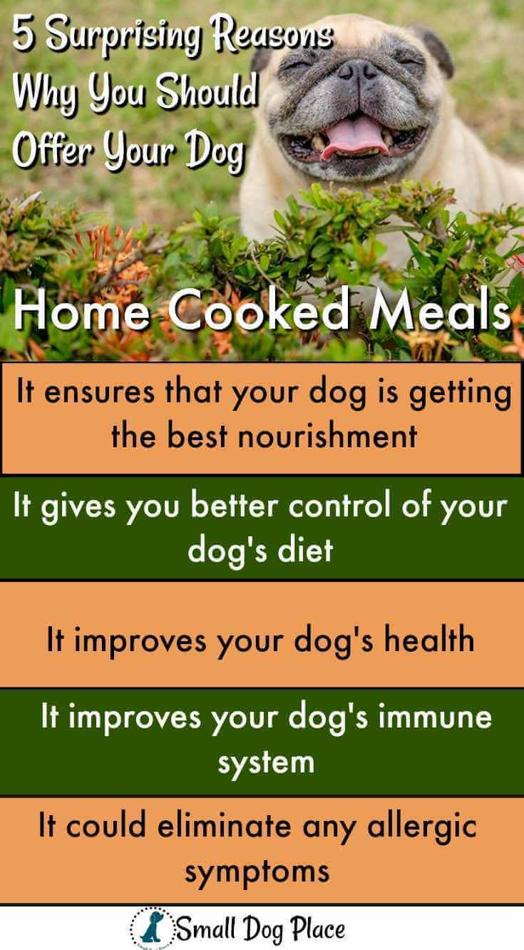 Home cooked meals for dogs