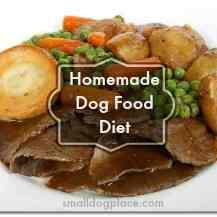 Homemade Dog Food Diet