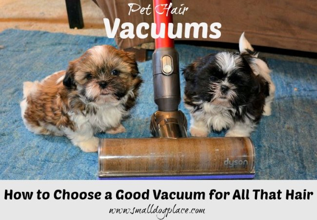 How to Choose a Good Vacuum for Pet Hair