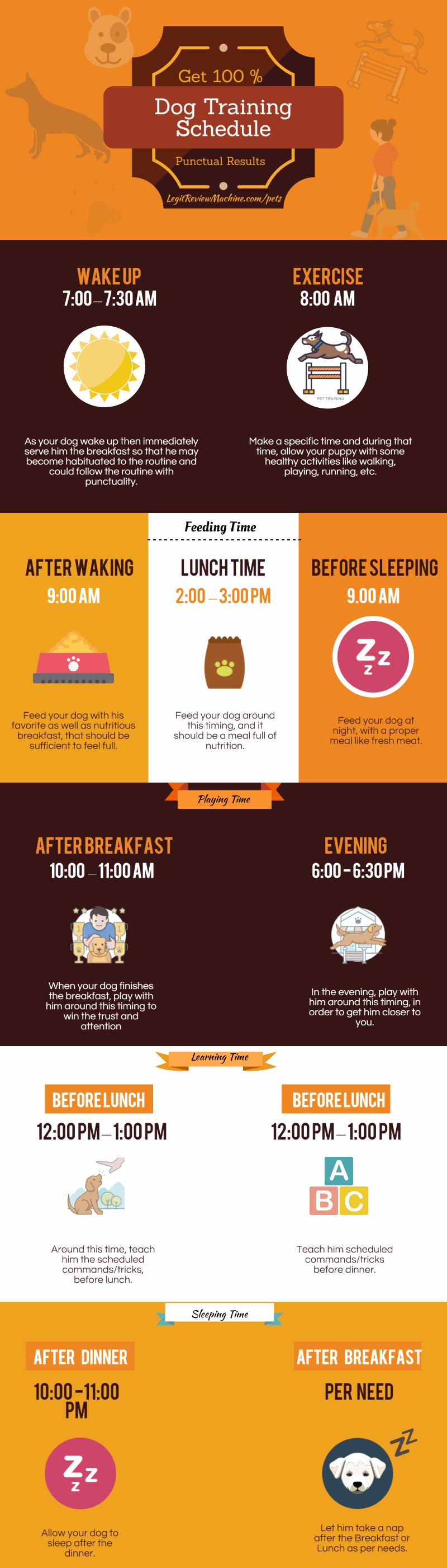 Dog Training Schedule Infographic