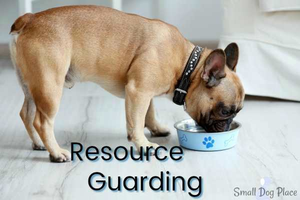 Resource Guarding