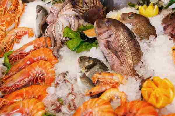 Fresh seafood and fish packed in ice