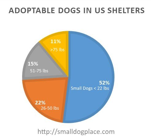 Adoptable Dogs in U.S. Shelters Pie Chart