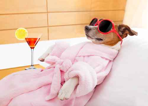 You guys regularly pamper yourself (spa visits)