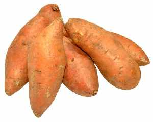 Fruits and Vegetables for Dogs:  Sweet Potatoes
