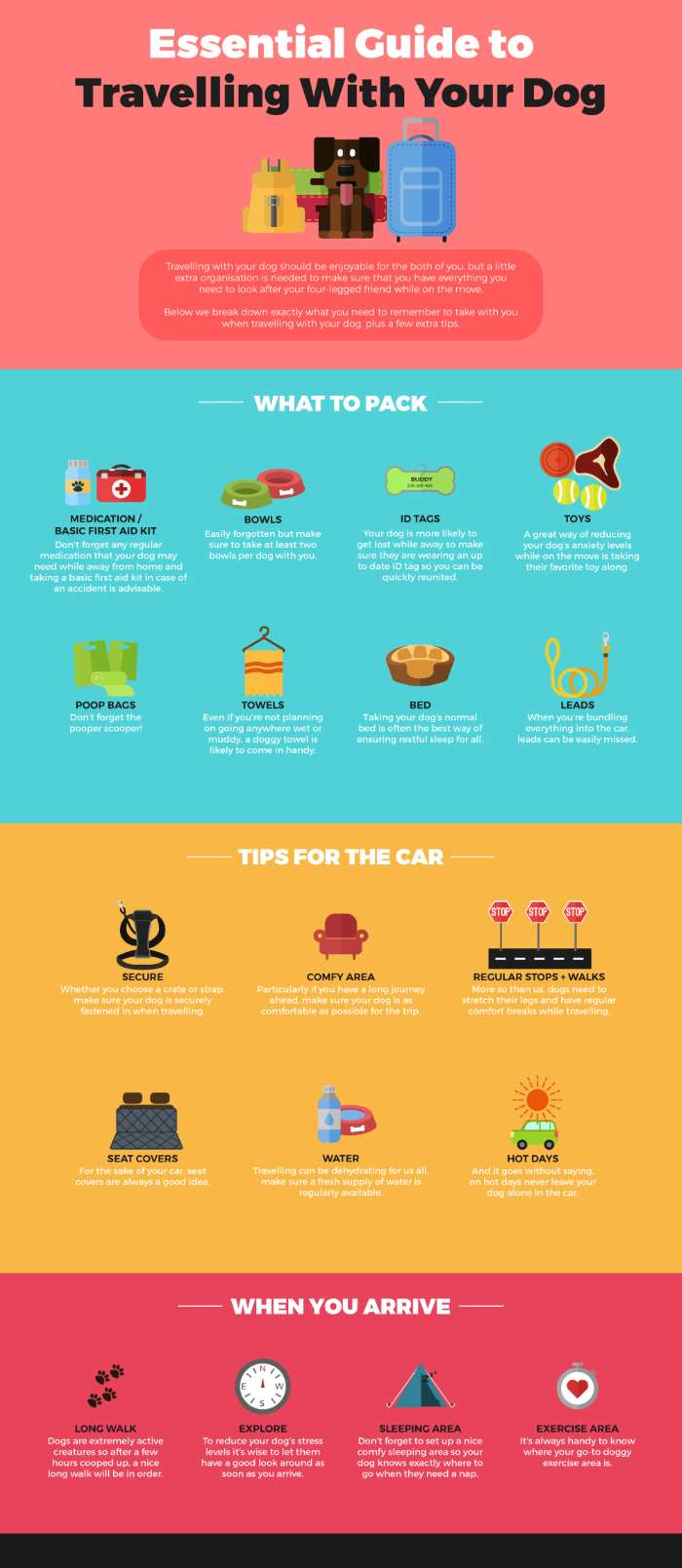 Small Dog Travel:  Infographic