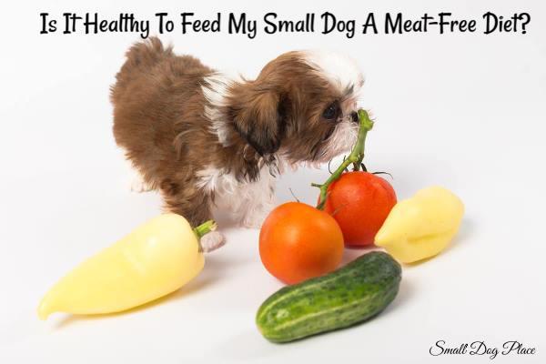 Vegan Dog Food