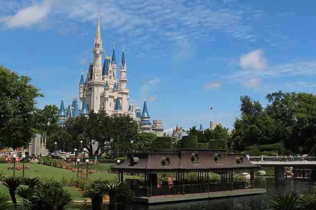 Disney Dog Names for Girls:  Walt Disney World